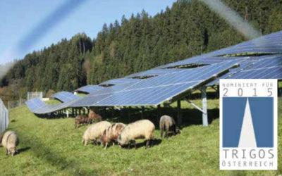 Blickpunkt Sonnenenergie Ausgabe 2015-02